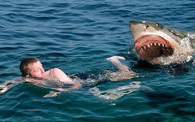 Man-attacked-by-shark-and-s