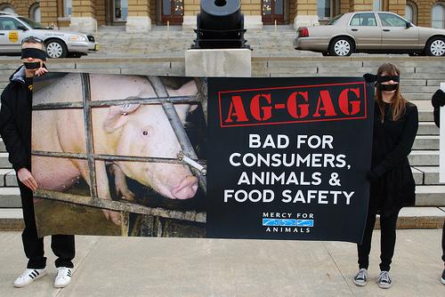 ag-gag-1