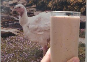 kirschners korner smoothie