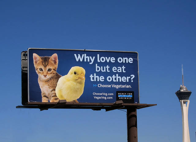 mercy-for-animals-why-love-billboard