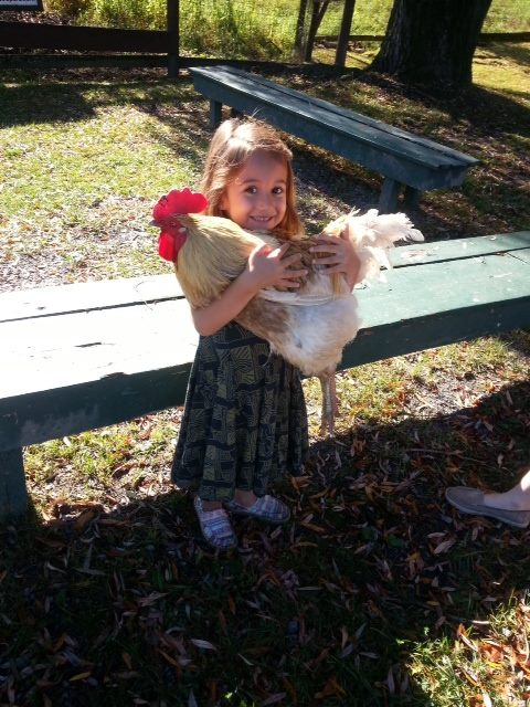 $5 Friday Pick: Catskill Animal Sanctuary – Kirschner's Korner
